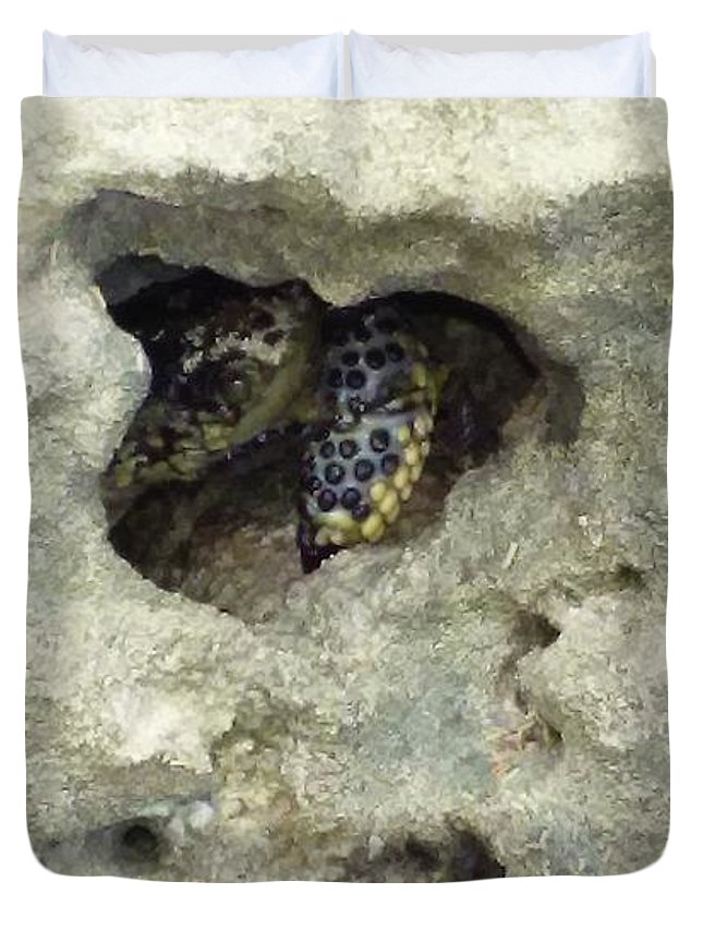 Crab Duvet Cover featuring the photograph Crab Hiding In A Rock On The Seashore by Denise Crawford