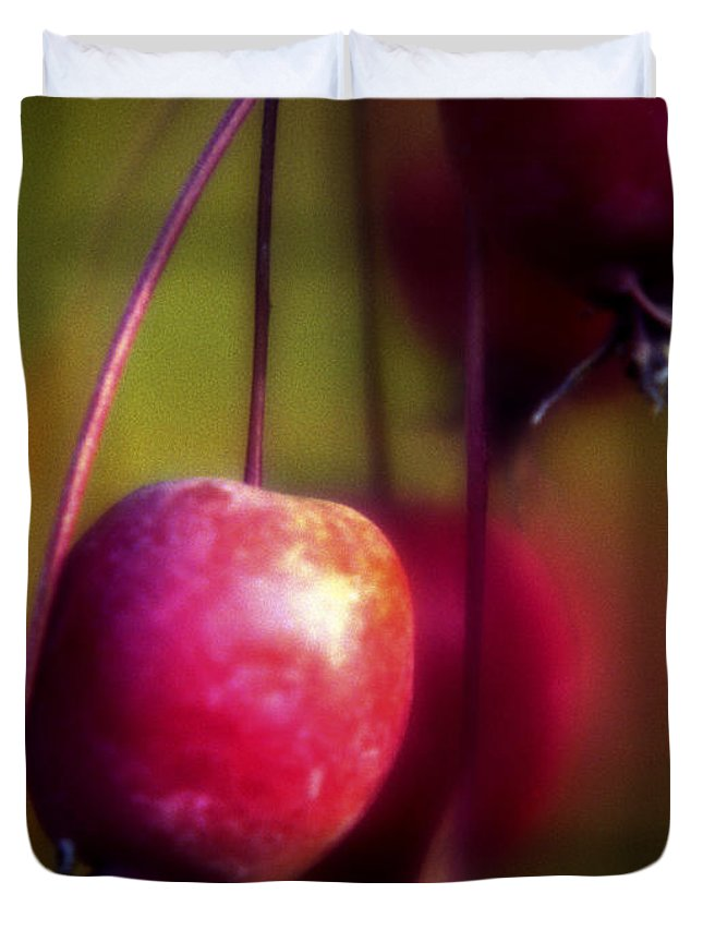Macro Duvet Cover featuring the photograph Crabapple by Lee Santa