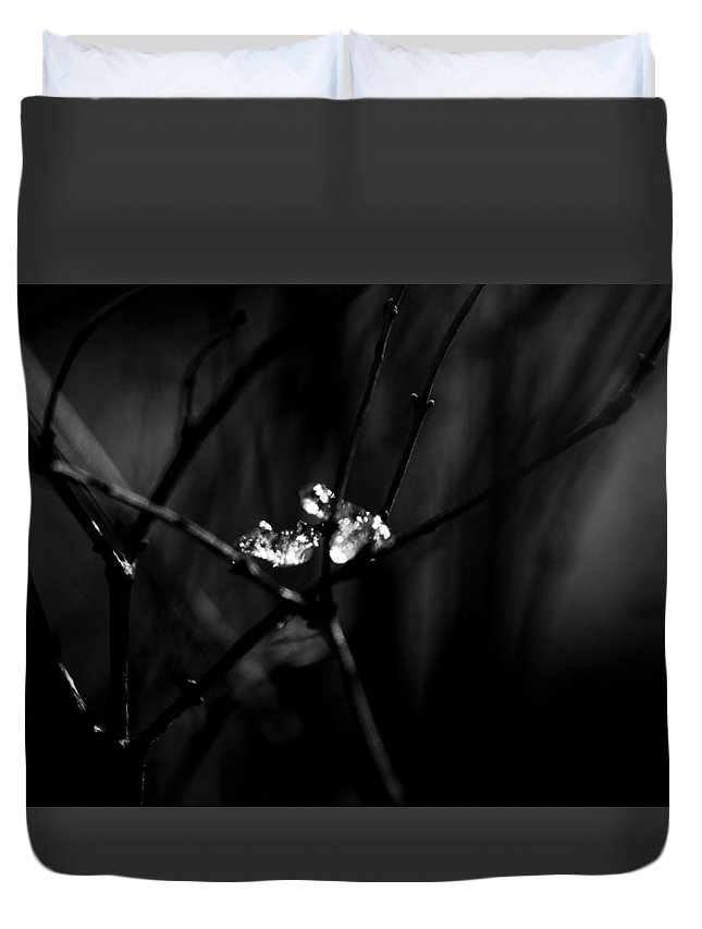 Black And White Duvet Cover featuring the photograph Cradle Of Ice by Kelly Hayner