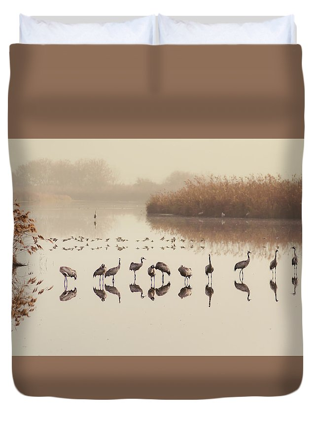 Cranes Duvet Cover featuring the photograph Cranes In Line by Gal Gross