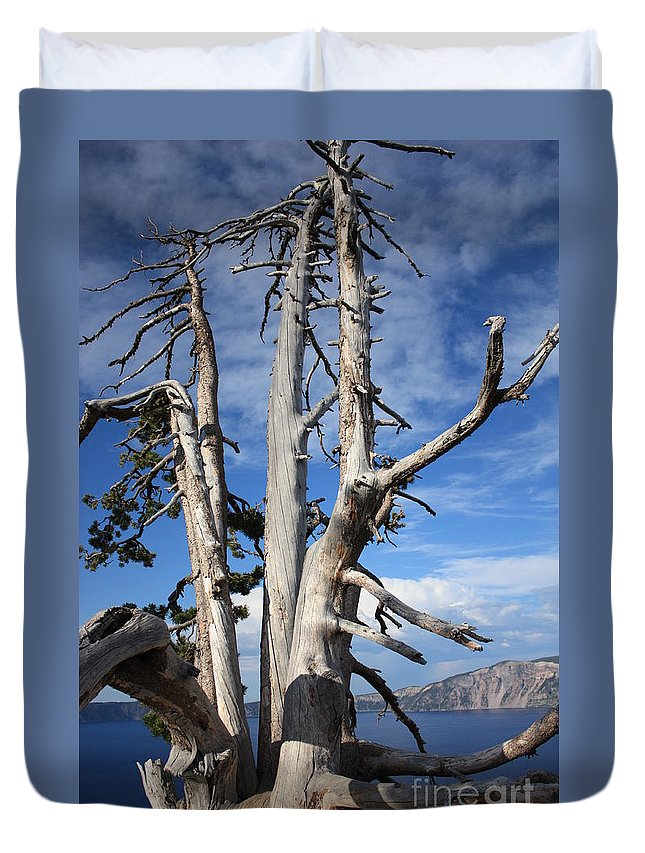 Tree Duvet Cover featuring the photograph Crater Lake Tree by Carol Groenen