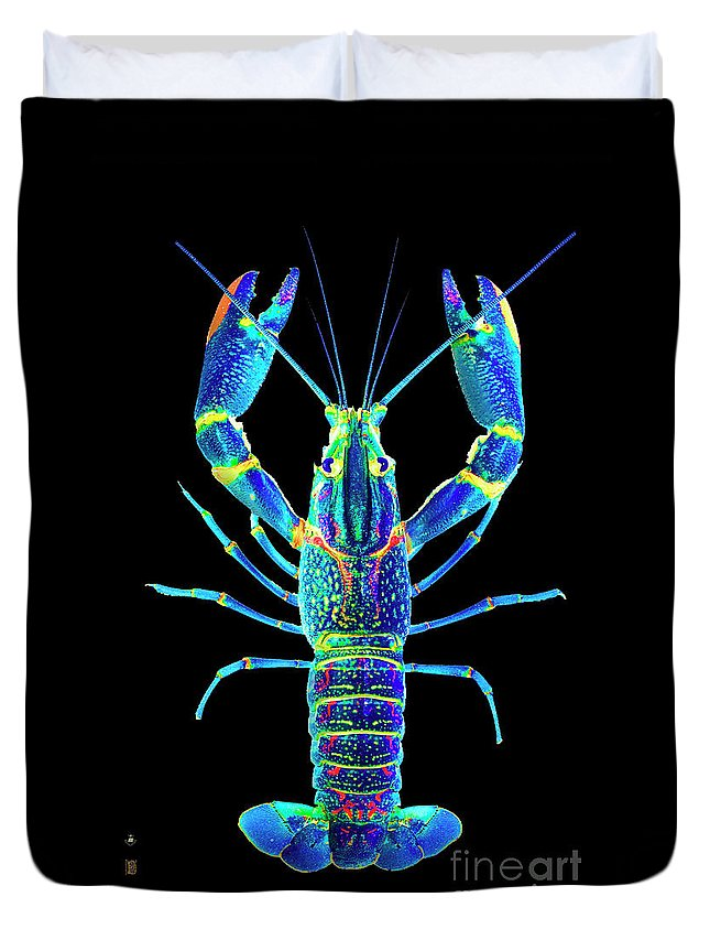 Poster Digital Art Greeting Cards Postcard Paintings Drawings Design Collage Assemblage Vivid Colors Bright Crawfish Langusta Langosta American Lobster Sea Aquarium Aqua Tropical Seafood Duvet Cover featuring the mixed media Crawfish In The Dark - Blublue by Baptiste Posters