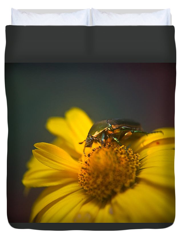 June Duvet Cover featuring the photograph Crawling June Beetle by Douglas Barnett