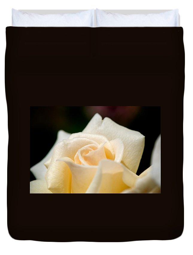 Lisa Knechtel Duvet Cover featuring the photograph Cream Rose Kisses by Lisa Knechtel