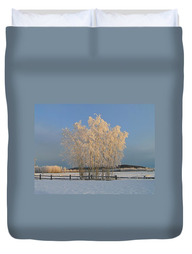 Snow Duvet Cover featuring the photograph Creamer Field by Louise Magno