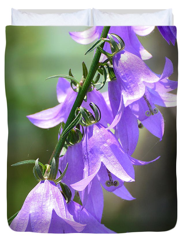 Nature Duvet Cover featuring the photograph Creeping Bellflower by Lyle Crump