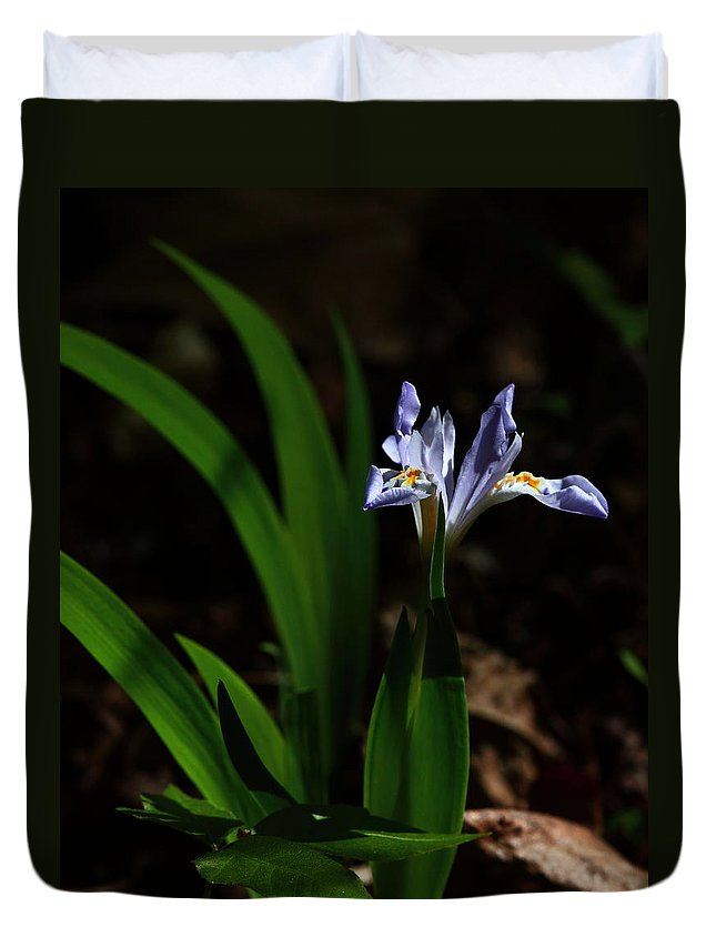 Crested Iris Duvet Cover featuring the photograph Crested Iris In Lost Valley by Michael Dougherty