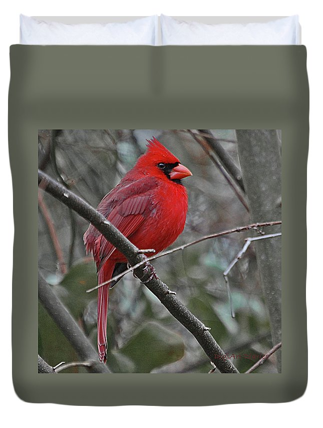 Bird Duvet Cover featuring the digital art Crimson Cardinal by DigiArt Diaries by Vicky B Fuller