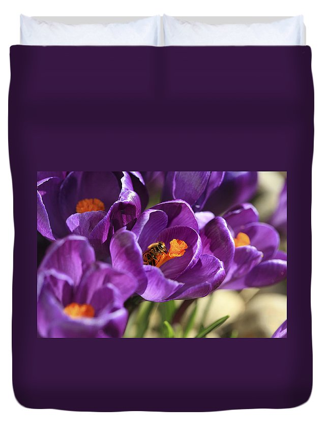 Bee Duvet Cover featuring the photograph Crocus And Bee by Marilyn Hunt