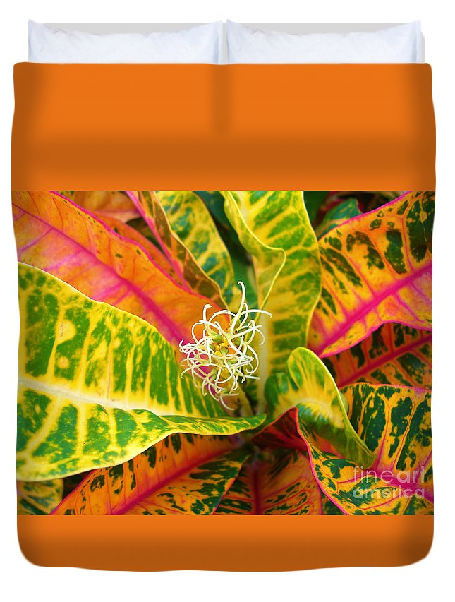 Abstract Duvet Cover featuring the photograph Croton Leaves by Ron Dahlquist - Printscapes