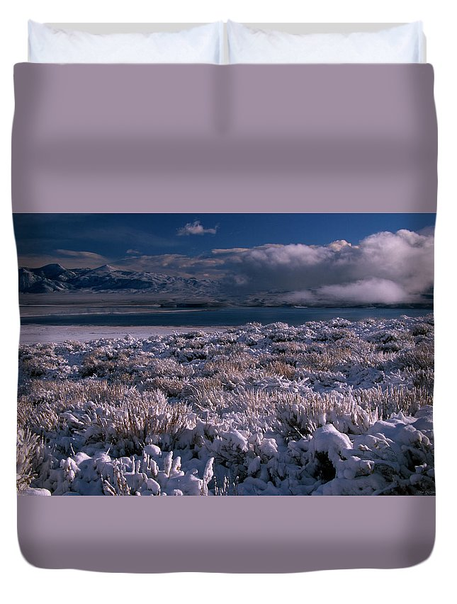 Crowley Lake Duvet Cover featuring the photograph Crowley Lake by Soli Deo Gloria Wilderness And Wildlife Photography