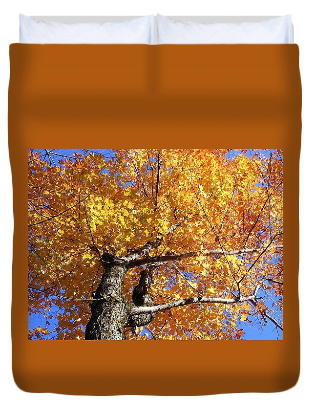 Trees Duvet Cover featuring the photograph Crown Fire by Dave Martsolf
