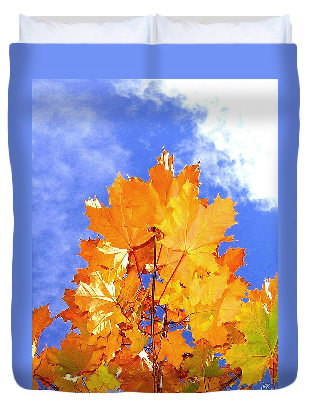 Maple Leaves Duvet Cover featuring the photograph Crown Of Gold by Will Borden