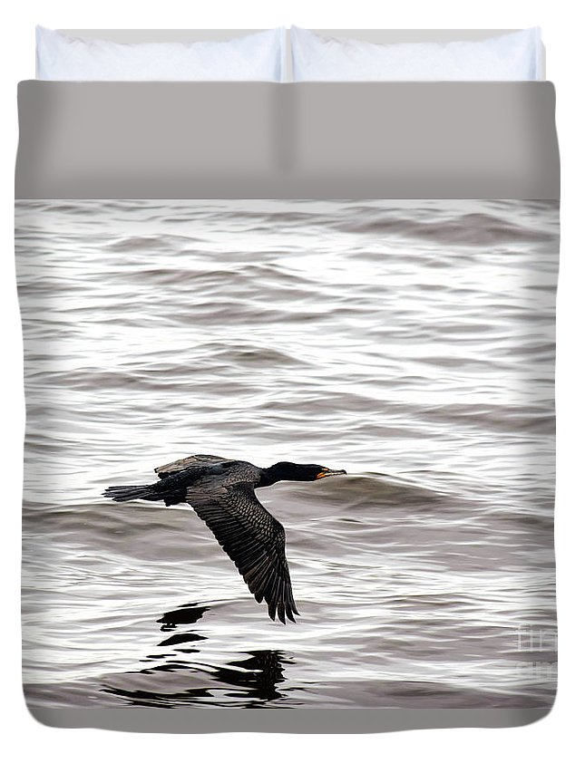 Cruising Cormorant Duvet Cover featuring the photograph Cruising Cormorant by William Tasker