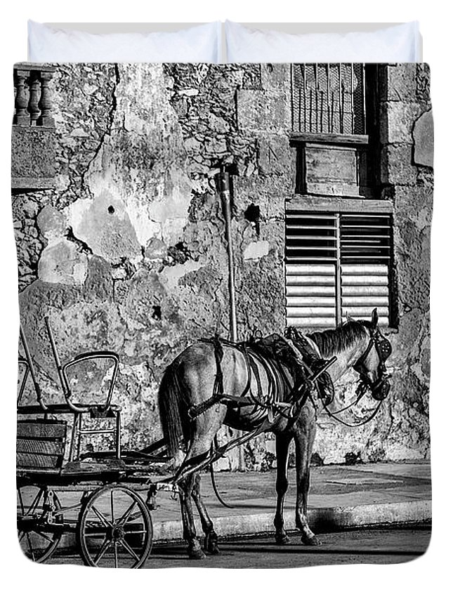 Cuban Horse Power; Cuban; Horse; Power; Horse And Carriage; Carriage; Hp; Cuba; Photography & Digital Art; Photography; Photo; Photo Art; Art; Digital Art; 2bhappy4ever; 2bhappy4ever.com; 2bhappy4evercom; Tobehappyforever; Duvet Cover featuring the photograph Cuban Horse Power BW by Erron