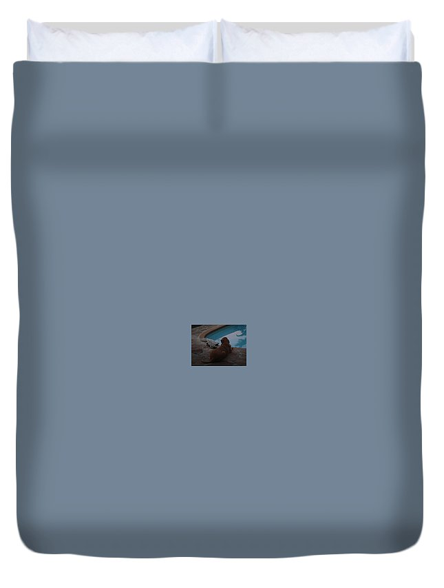 Bloodhound Duvet Cover featuring the photograph Cujo And The Alligator by Val Oconnor