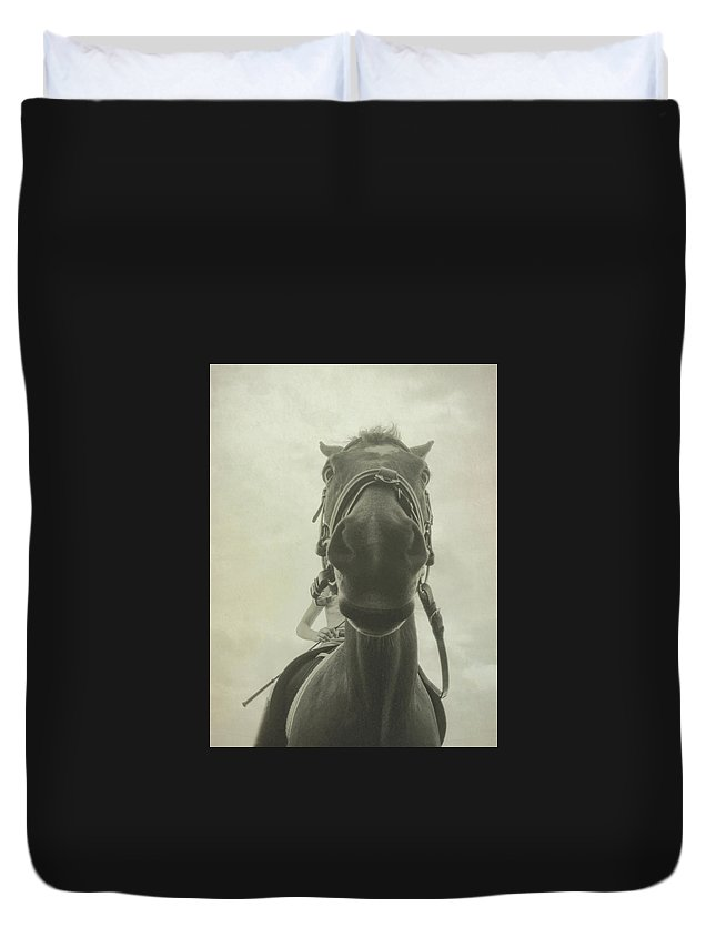 Horse Duvet Cover featuring the photograph Curious Kirby by JAMART Photography