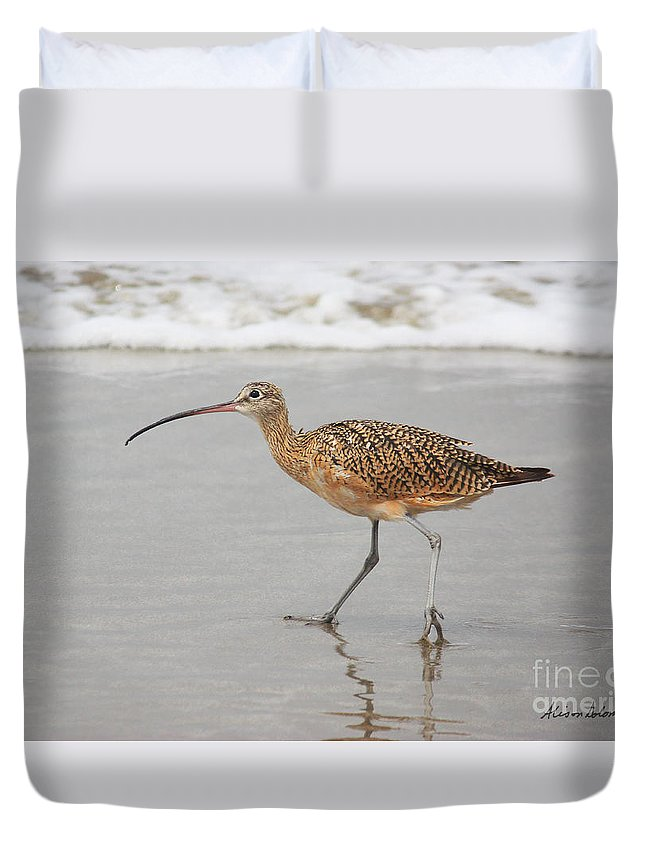 Bird Duvet Cover featuring the photograph Curlew In The Surf by Alison Salome
