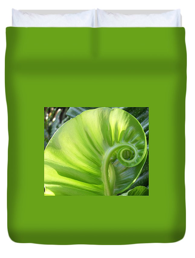Leaf Duvet Cover featuring the photograph Curly Leaf by Amy Fose