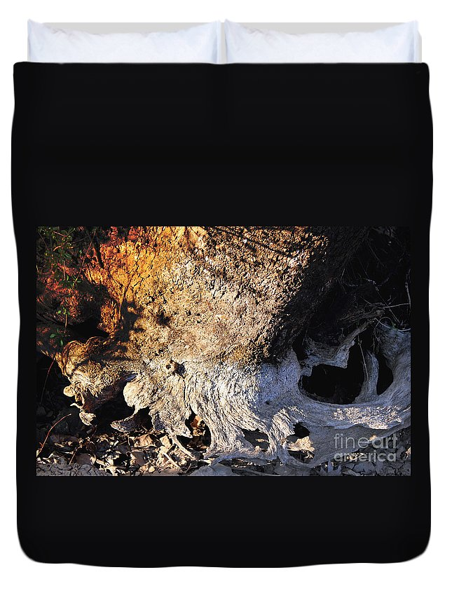 Abstract Duvet Cover featuring the photograph Curves And Colors In Nature by Todd Blanchard