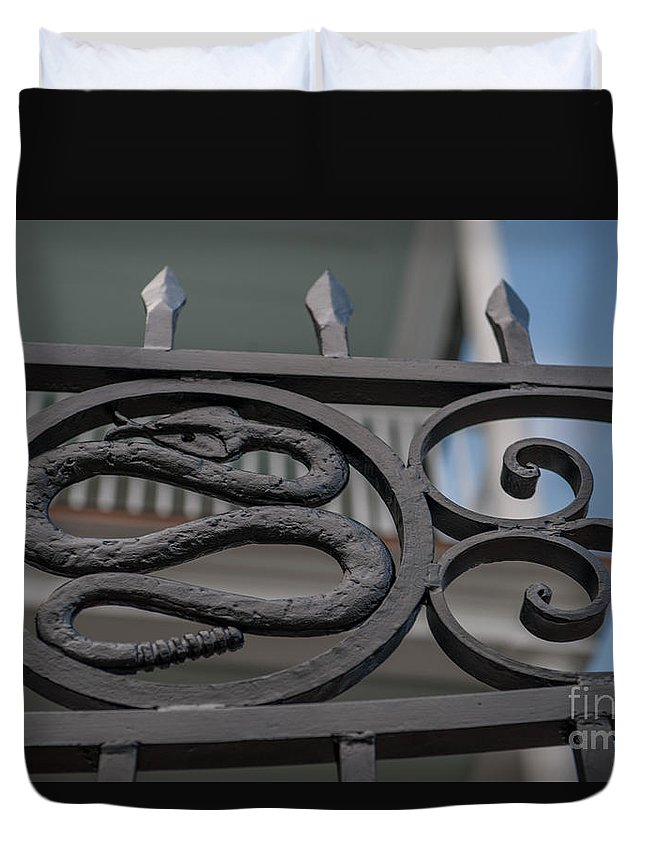 Snake Gate Duvet Cover featuring the photograph Custom Snake Gate by Dale Powell