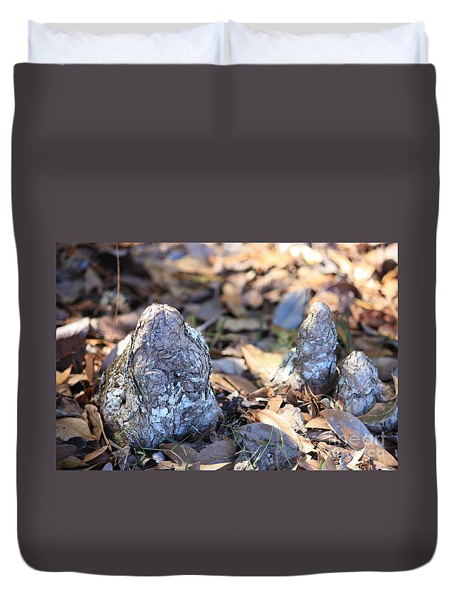 Cypress Knees Duvet Cover featuring the photograph Cute Cypress Knees by Carol Groenen