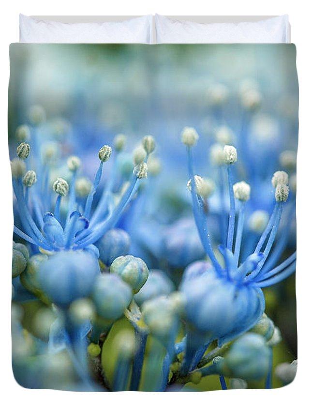 Soft Focus Duvet Covers