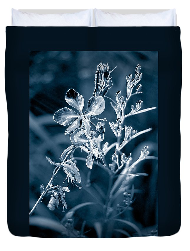Cyanotype Duvet Cover featuring the photograph Cyanotype Morn by Trish Hale