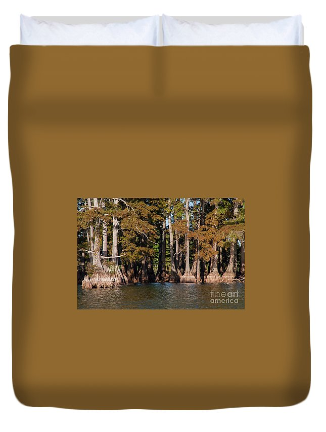 Reelfoot Lake State Park Duvet Cover featuring the photograph Cypress Grove Five by Bob Phillips