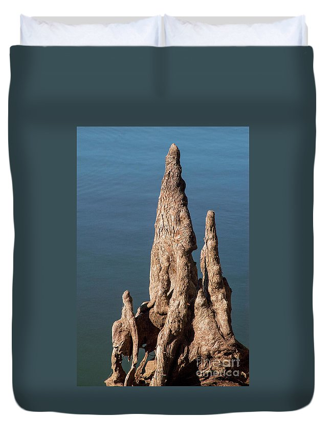 Reelfoot Lake State Park Duvet Cover featuring the photograph Cypress Knees by Bob Phillips