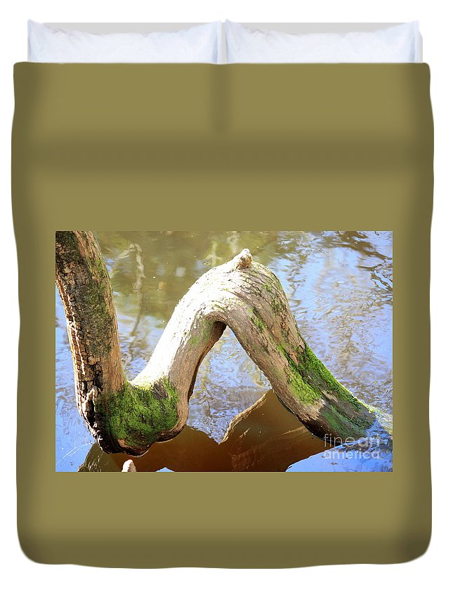 Cypress Knees Duvet Cover featuring the photograph Cypress Knees by Carol Groenen