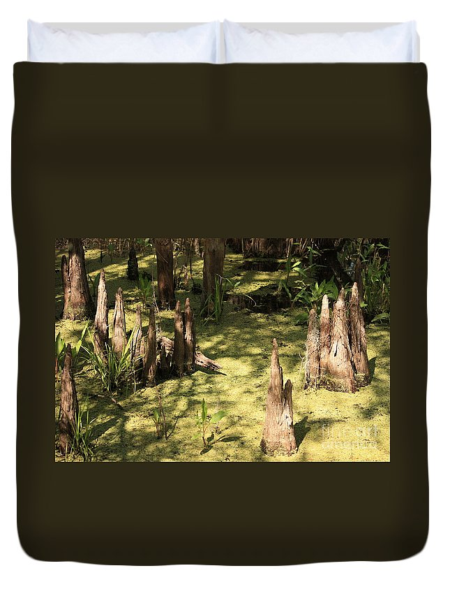 Swamps Duvet Cover featuring the photograph Cypress Knees In Green Swamp by Carol Groenen