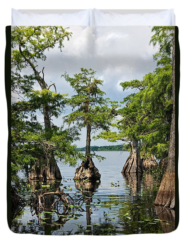Trees Duvet Cover featuring the photograph Cypress Reflections by Christopher Holmes