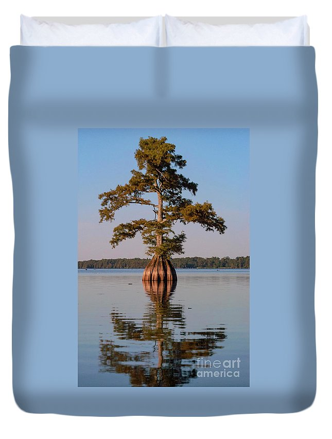 Reelfoot Lake State Park Duvet Cover featuring the photograph Cypress Tree On Reelfoot Lake by Bob Phillips