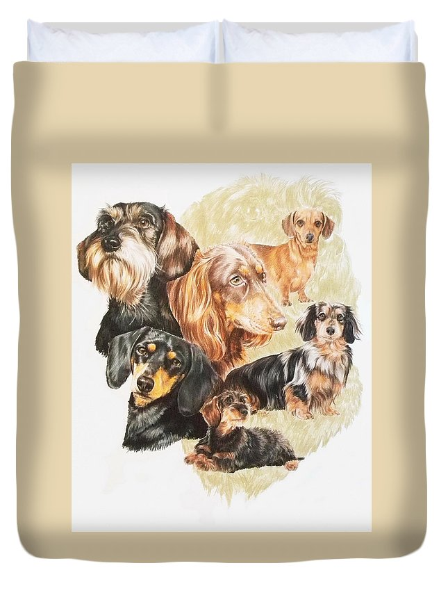Purebred Dog Duvet Cover featuring the drawing Dachshund Revamp by Barbara Keith