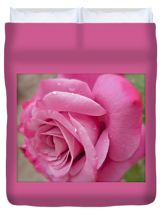 Photograph Of Pink Rose Duvet Cover featuring the photograph Daddy's Rose by Gwyn Newcombe