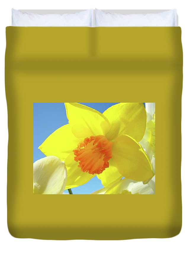 �daffodils Artwork� Duvet Cover featuring the photograph Daffodil Flowers Artwork 18 Spring Daffodils Art Prints Floral Artwork by Baslee Troutman
