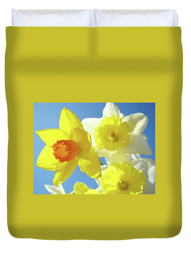 Flowers Duvet Cover featuring the photograph Daffodils Art Print Floral Sky Bouquet Daffodil Flower Baslee by Baslee Troutman
