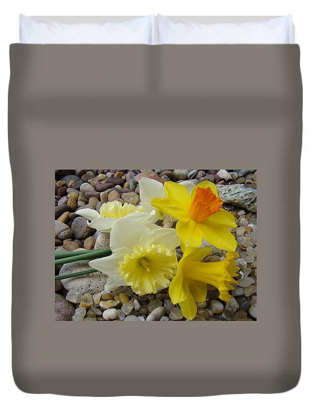 �daffodils Artwork� Duvet Cover featuring the photograph Daffodils Flower Artwork 29 Daffodil Flowers Agate Rock Garden Floral Art Prints by Baslee Troutman