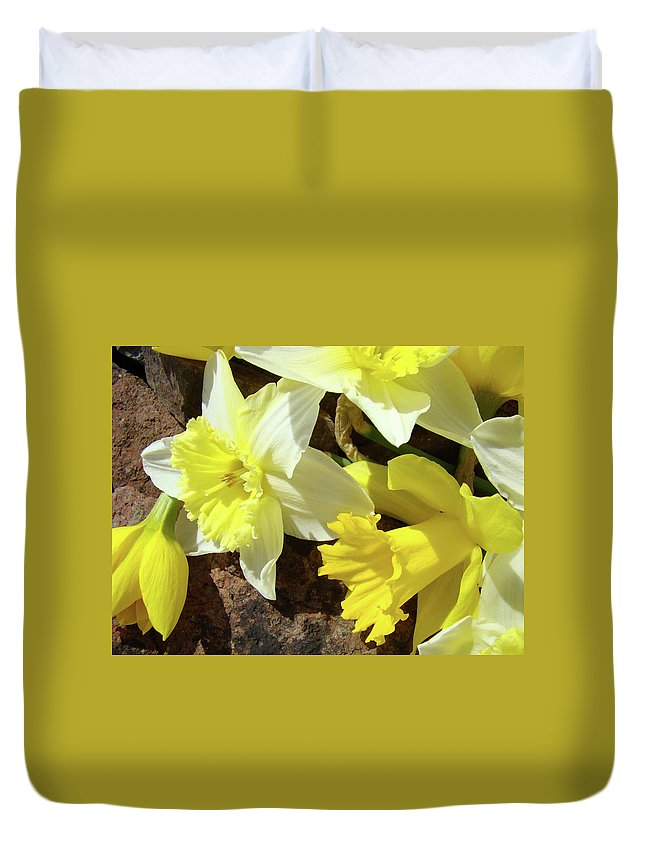 �daffodils Artwork� Duvet Cover featuring the photograph Daffodils Flower Bouquet Rustic Rock Art Daffodil Flowers Artwork Spring Floral Art by Baslee Troutman