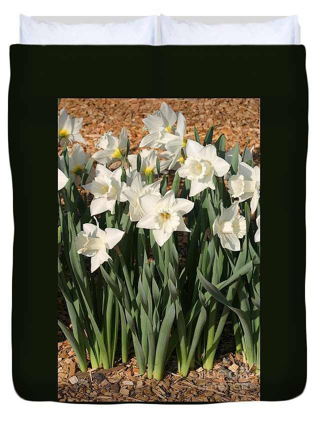 Dafodil Duvet Cover featuring the photograph Dafodil001 by Gary Gingrich Galleries