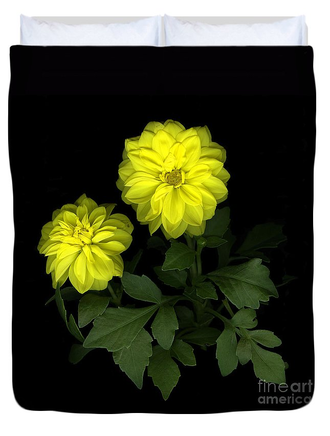 Yellow Duvet Cover featuring the photograph Dahlia by Christian Slanec