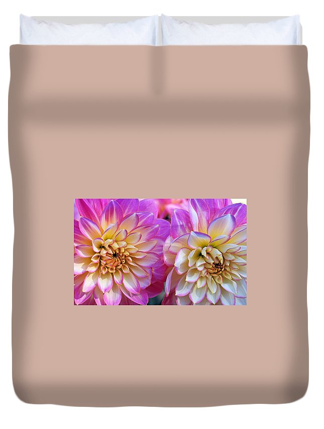 Dahlia Duvet Cover featuring the photograph Dahlia Cousins by Kathy Yates