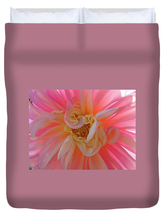 Dahlia Duvet Cover featuring the photograph Dahlia Flower Sunlit Pink White Dahlia Garden Floral by Baslee Troutman