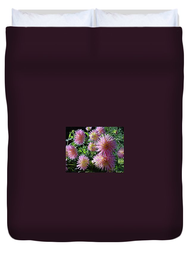 Group Duvet Cover featuring the photograph Dahlia Group by Shirley Heyn