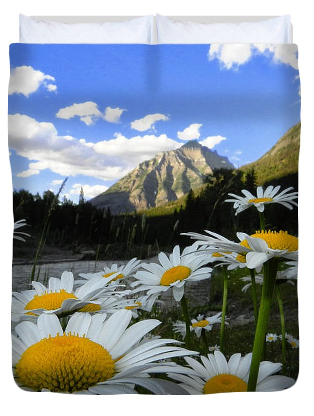 Daisy Duvet Cover featuring the photograph Daisies By Mcdonald Creek With Mt Cannon, Glacier Park by Heavens Peak