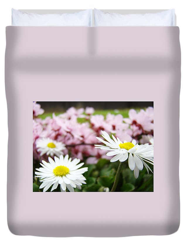 Daisies Duvet Cover featuring the photograph Daisies Flowers Art Prints Spring Flowers Artwork Garden Nature Art by Baslee Troutman