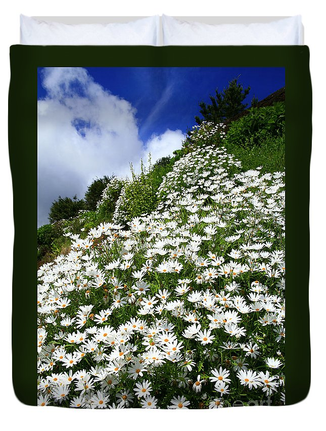 Countryside Duvet Cover featuring the photograph Daisies by Gaspar Avila