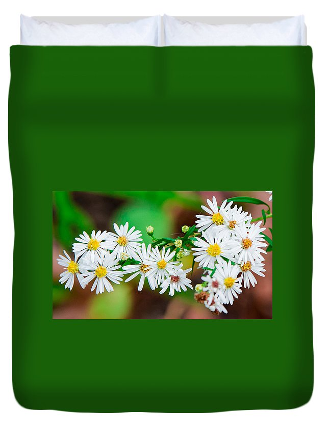 Daisies Duvet Cover featuring the photograph Daisies by Jay Whipple
