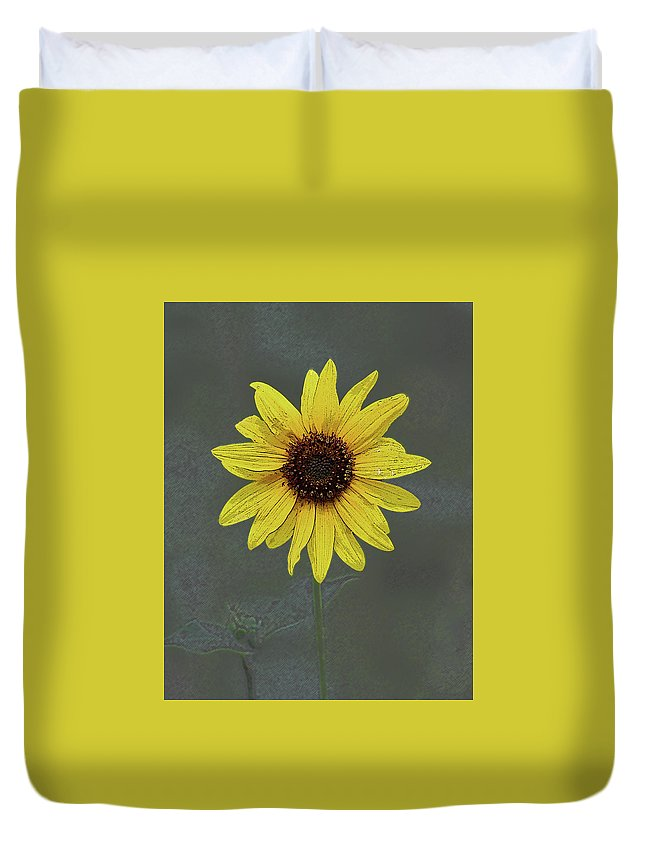 Image Duvet Cover featuring the photograph Daisy by Christina Boggs